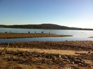 Kripalu Lake