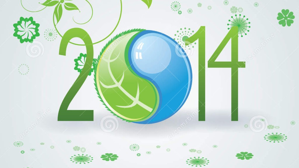 New Year in balance 2014