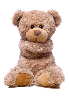 self hug bear