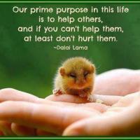 * Dalai Lama on Life's Purpose