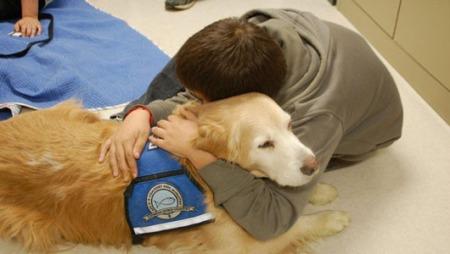 loving kindness dog