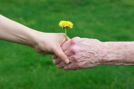 young hand giving flower to old hand