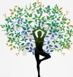 yoga tree
