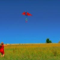 Mind is Like a Kite