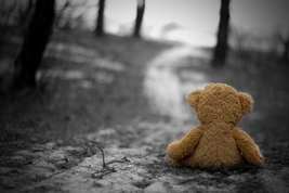 teddy all alone