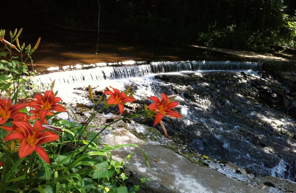 Paper Mill waterfall