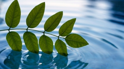 stillness into flow