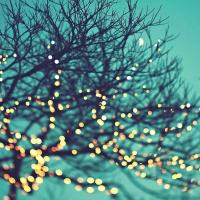 Joy and Twinkle Lights