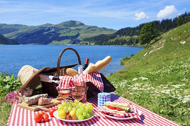 enjoy picnics