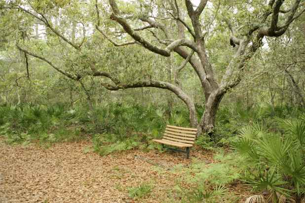a bench for resting