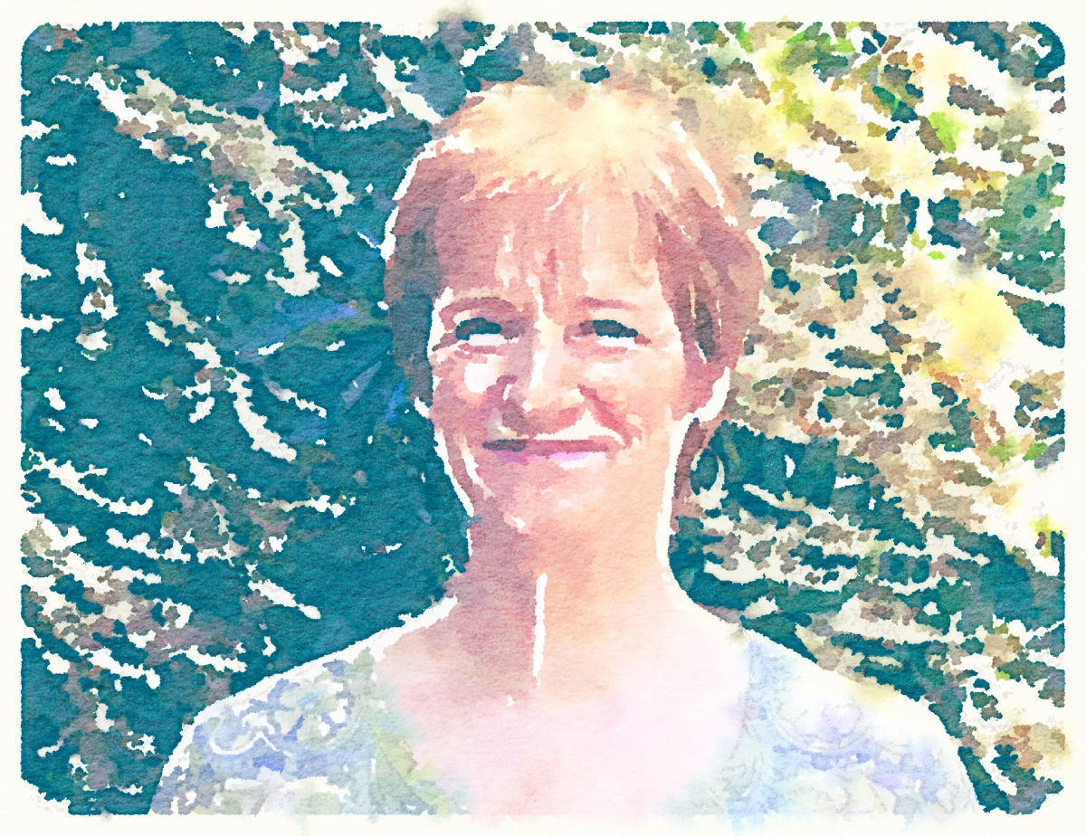 Val Boyko - waterlogue