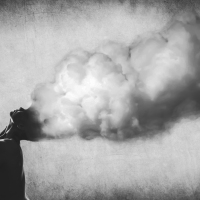 Mind is like the Wind