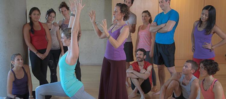 kripalu yoga teacher training