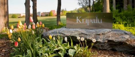 Kripalu in spring