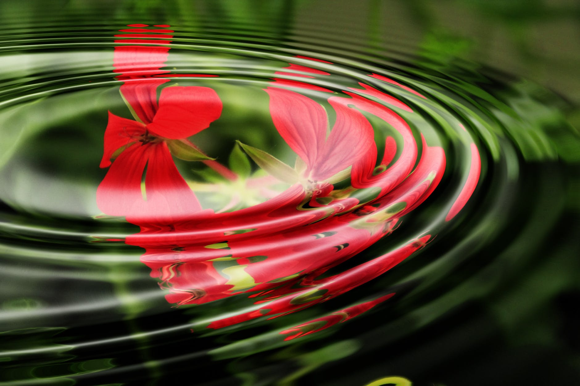 relaxation water wave circle