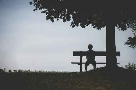 person sitting on bench under tree